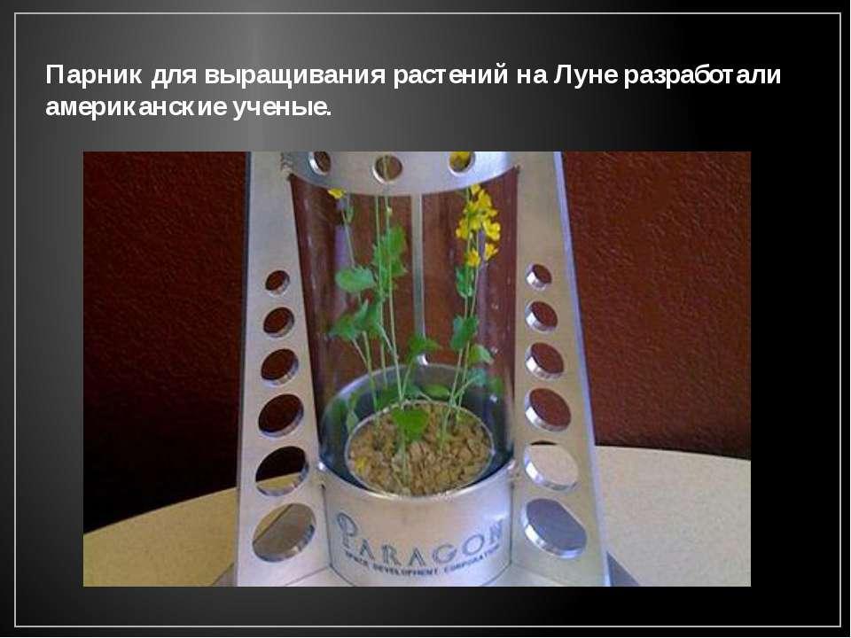 Парник для выращивания растений на Луне разработали американские ученые.