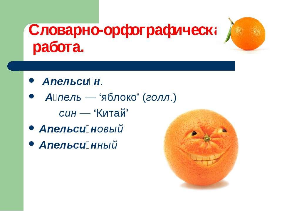 Словарно-орфографическая работа. Апельси н. А пель — 'яблоко' (голл.) син — '...