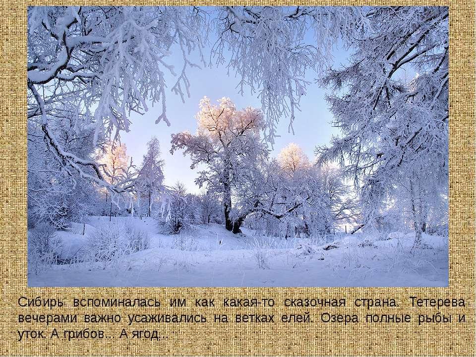 Сибирь вспоминалась им как какая-то сказочная страна. Тетерева вечерами важно...