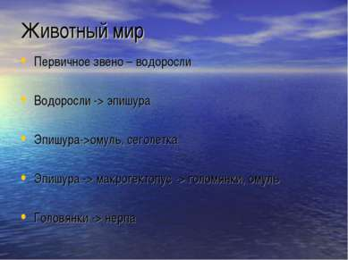 Животный мир Первичное звено – водоросли Водоросли -> эпишура Эпишура->омуль,...