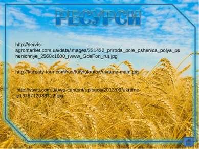 http://servis-agromarket.com.ua/data/images/221422_priroda_pole_pshenica_poly...