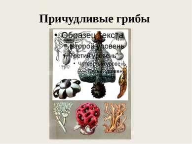 Причудливые грибы