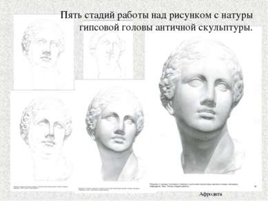 Пять стадий работы над рисунком с натуры гипсовой головы античной скульптуры....