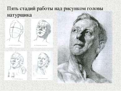 Пять стадий работы над рисунком головы натурщика