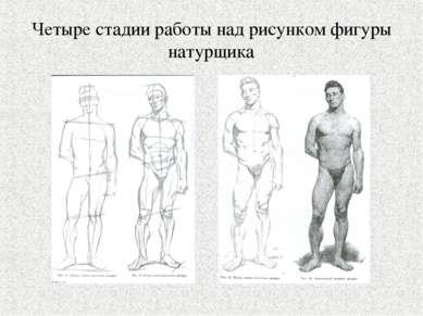 Четыре стадии работы над рисунком фигуры натурщика