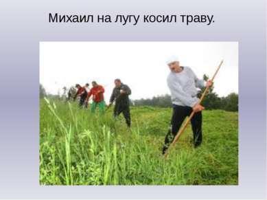 Михаил на лугу косил траву.