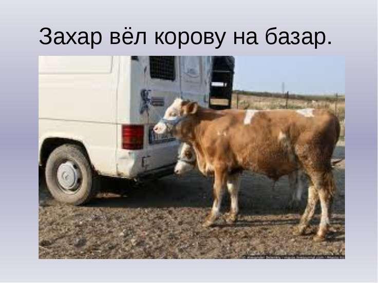 Захар вёл корову на базар.