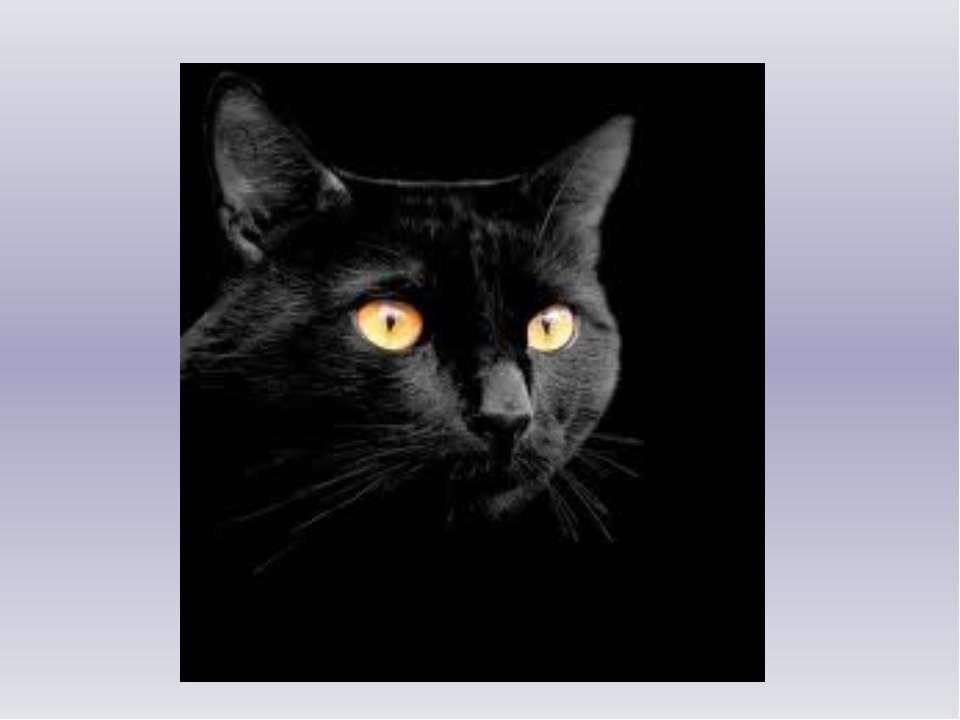 Черной ночью Черный кот Прыгнул Прямо в дымоход. В дымоходе чернота. Отыщи-ка...