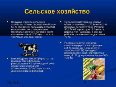 Сельское хозяйство Ведущая отрасль сельского хозяйства — животноводство (боле...
