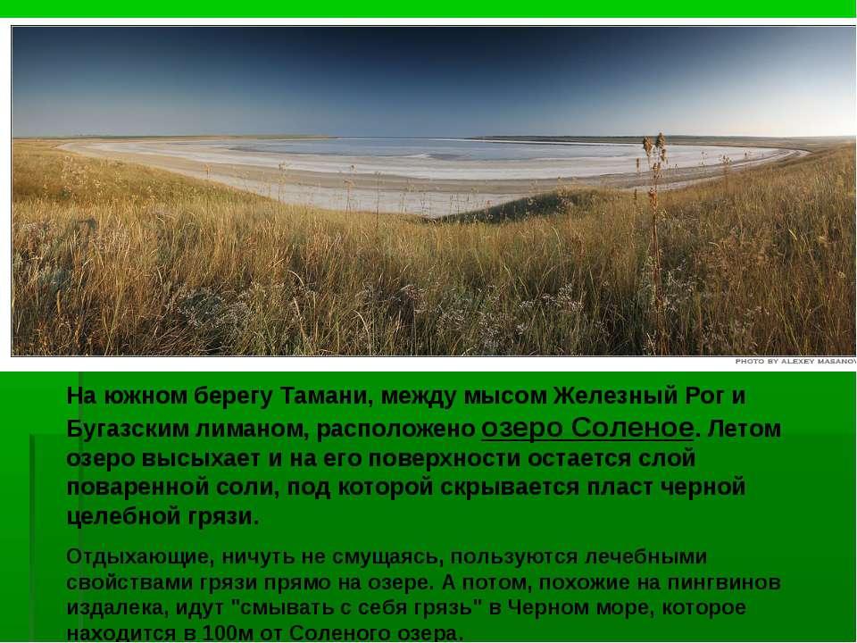 На южном берегу Тамани, между мысом Железный Рог и Бугазским лиманом, располо...