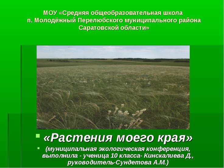 МОУ «Средняя общеобразовательная школа п. Молодёжный Перелюбского муниципальн...