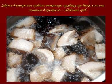 Забрось в кастрюлю с грибами очищеннуюлуковицупри варке: если она посинеет,...