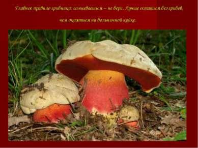Главное правило грибника: сомневаешься – не бери. Лучше остаться без грибов, ...
