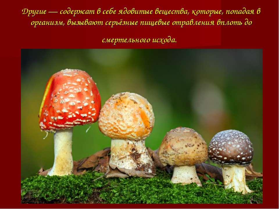 Другие — содержат в себе ядовитые вещества, которые, попадая в организм, вызы...