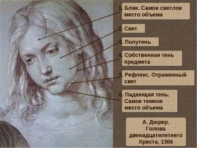 А. Дюрер. Голова двенадцатилетнего Христа, 1506 1. Блик. Самое светлое место ...