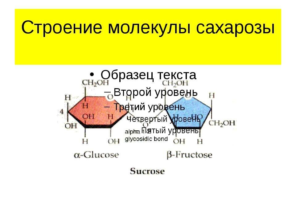 Строение молекулы сахарозы