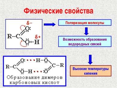 Физические свойства Поляризация молекулы Возможность образования водородных с...