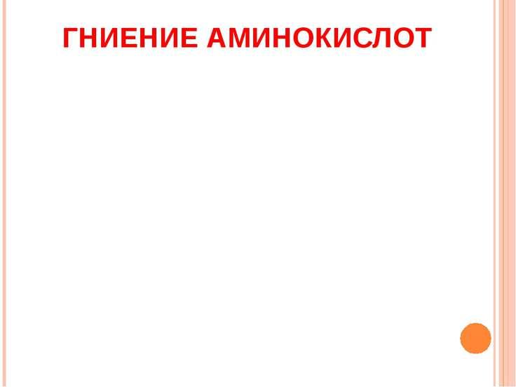 ГНИЕНИЕ АМИНОКИСЛОТ