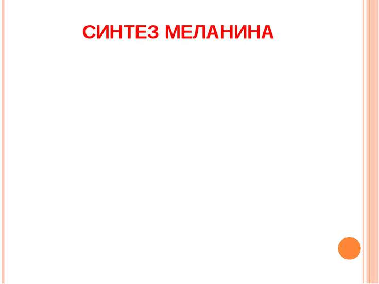 СИНТЕЗ МЕЛАНИНА