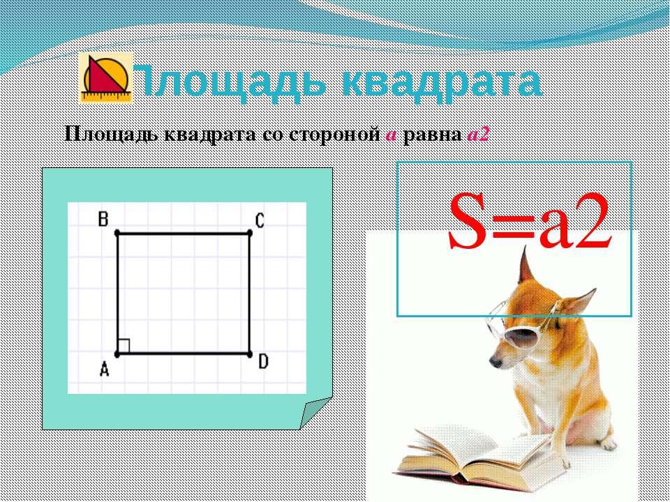 Площадь квадрата Площадь квадрата со стороной а равна а2 S=a2