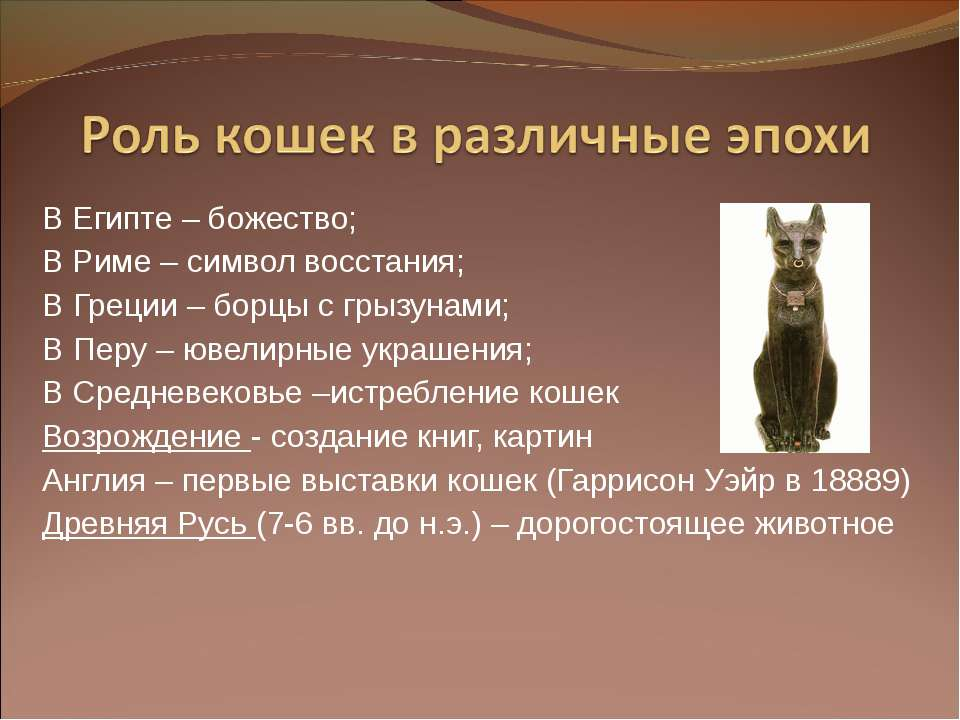 В Египте – божество; В Риме – символ восстания; В Греции – борцы с грызунами;...