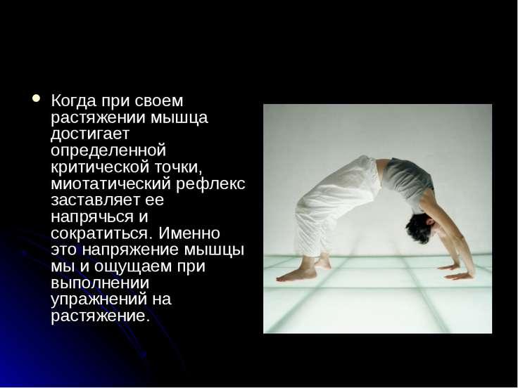 Когда при своем растяжении мышца достигает определенной критической точки, ми...