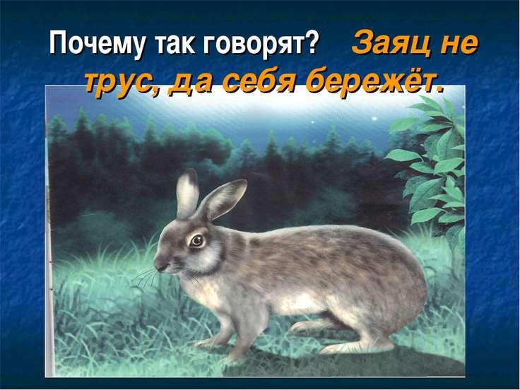 Почему так говорят? Заяц не трус, да себя бережёт.