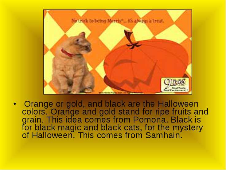 Orange or gold, and black are the Halloween colors. Orange and gold stand for...