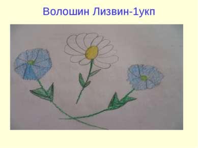 Волошин Лизвин-1укп