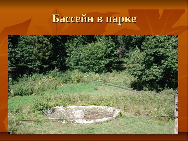 Бассейн в парке
