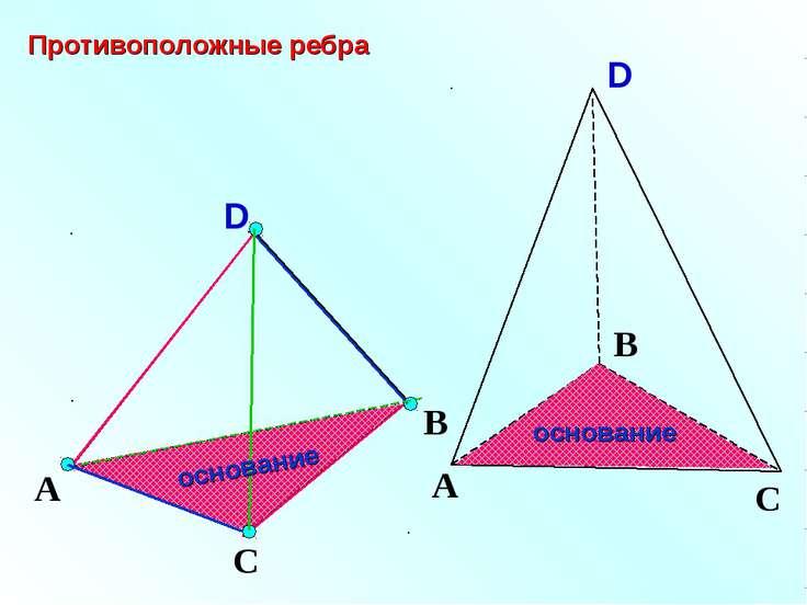 D А С В Противоположные ребра основание основание