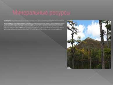 Минеральные ресурсы Полезные ископаемые - минеральные образования земной коры...