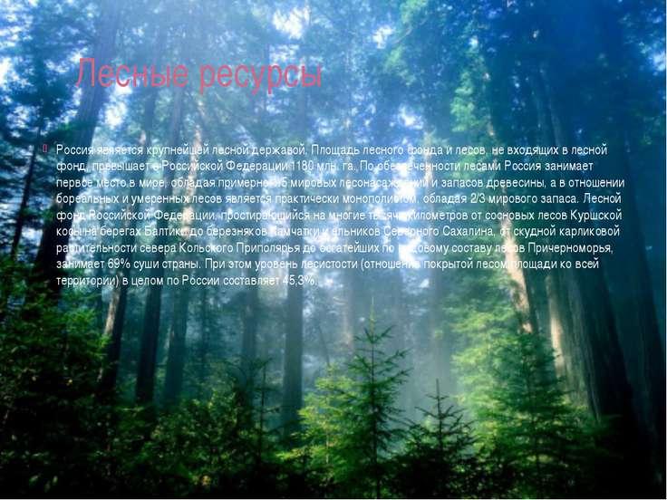 Лесные ресурсы Россия является крупнейшей лесной державой. Площадь лесного фо...