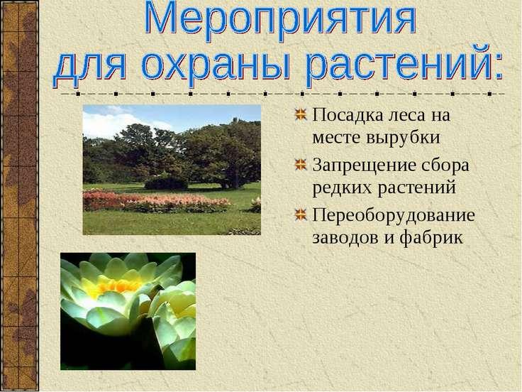 Посадка леса на месте вырубки Запрещение сбора редких растений Переоборудован...