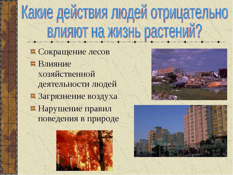 Сокращение лесов Влияние хозяйственной деятельности людей Загрязнение воздуха...
