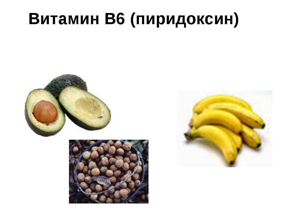 Реферат На Тему Витамин B6