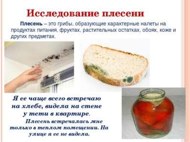 Исследование плесени Плесень – это грибы, образующие характерные налеты на пр...