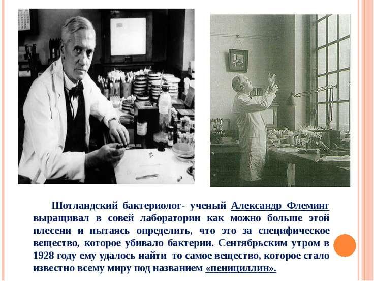 Шотландский бактериолог- ученый Александр Флеминг выращивал в совей лаборатор...