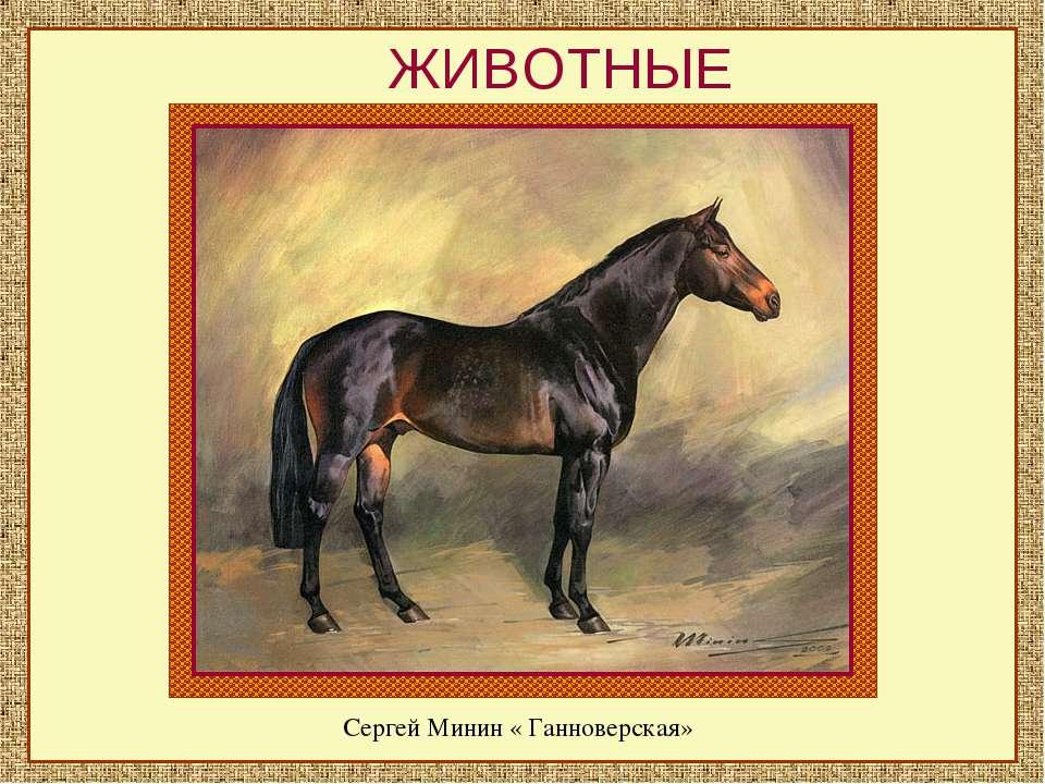 ЖИВОТНЫЕ Сергей Минин « Ганноверская»