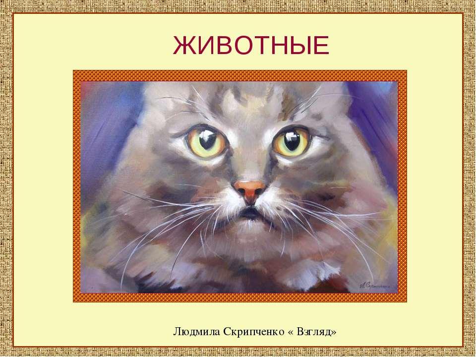 ЖИВОТНЫЕ Людмила Скрипченко « Взгляд»