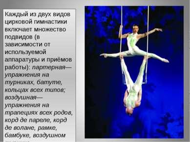 Каждый из двух видов цирковой гимнастики включает множество подвидов (в завис...