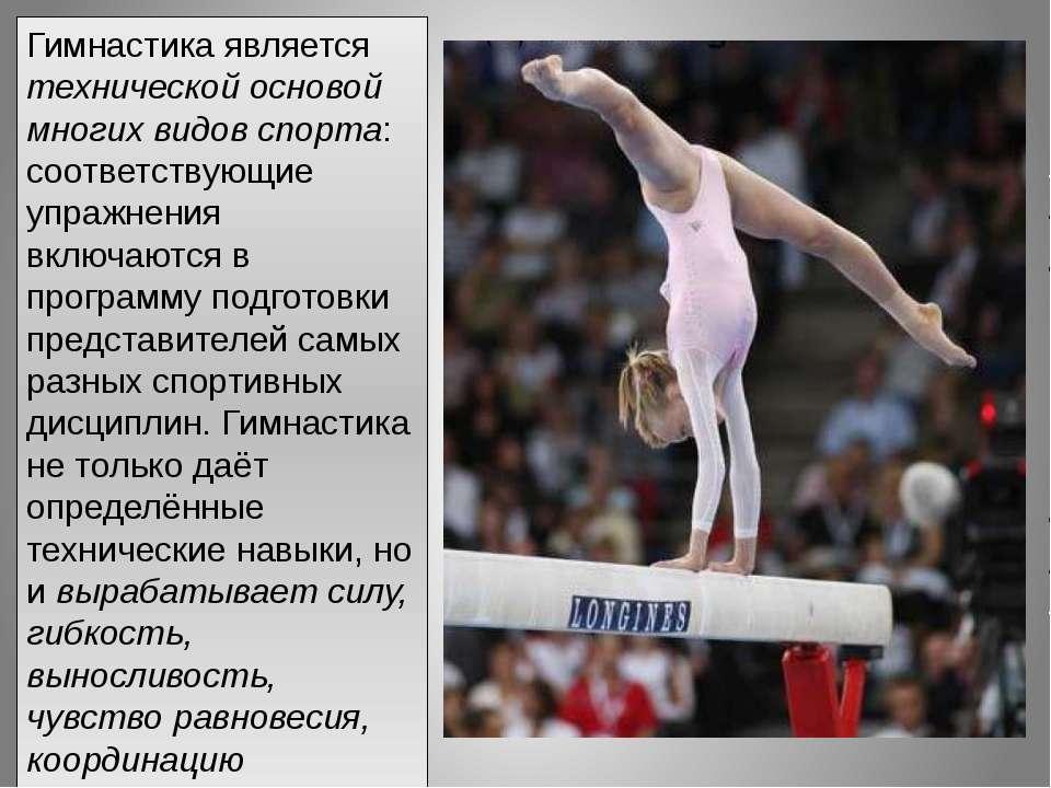 Гимнастика является технической основой многих видов спорта: соответствующие ...