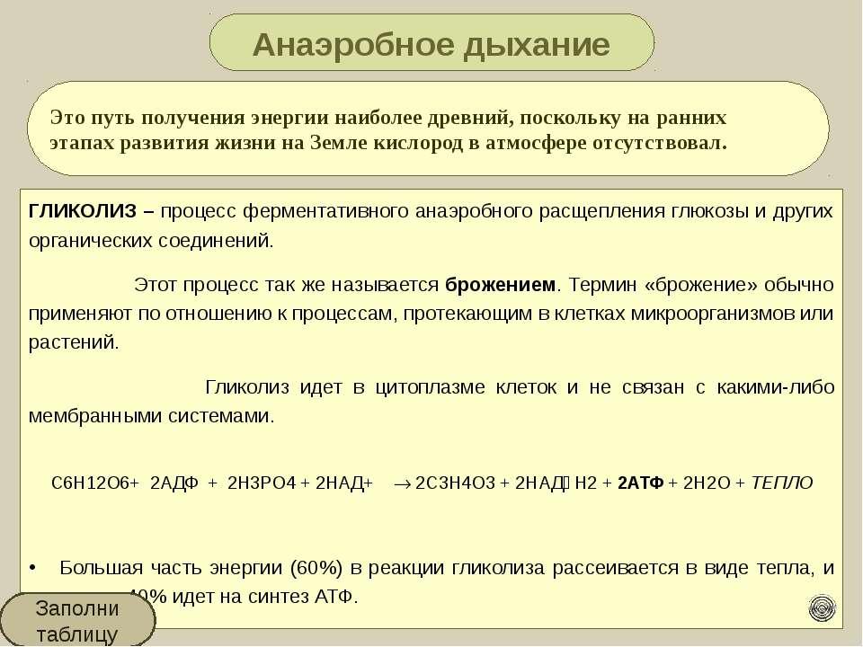Этапы энергетического обмена Этапы энергетического обмена Где протекает Харак...