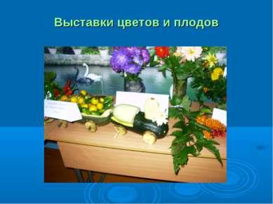 Выставки цветов и плодов