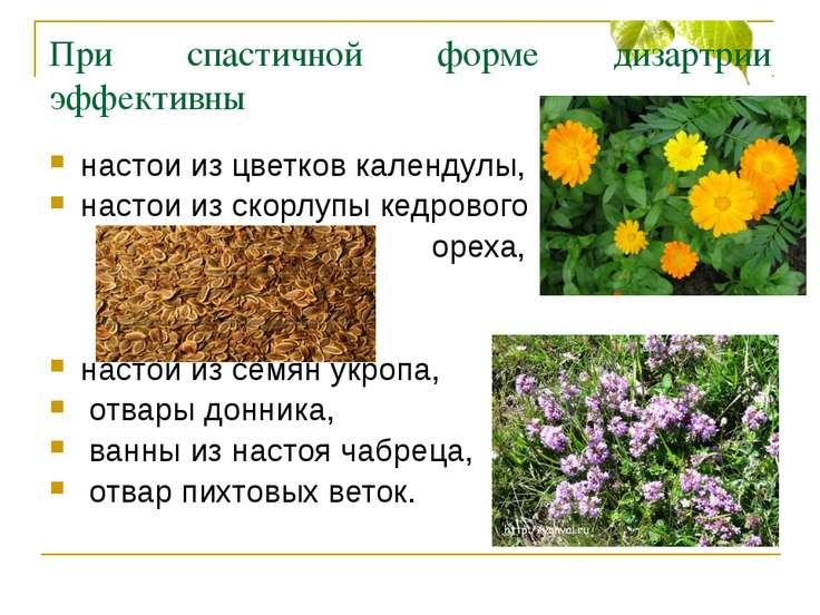 При спастичной форме дизартрии эффективны настои из цветков календулы, настои...