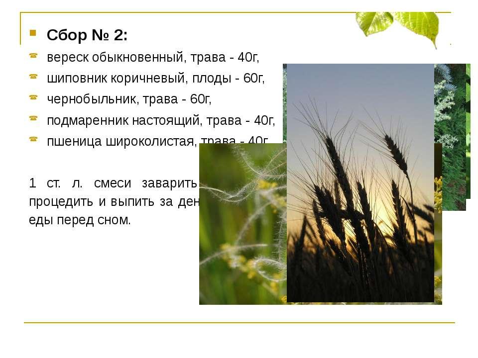 Сбор № 2: вереск обыкновенный, трава - 40г, шиповник коричневый, плоды - 60г,...