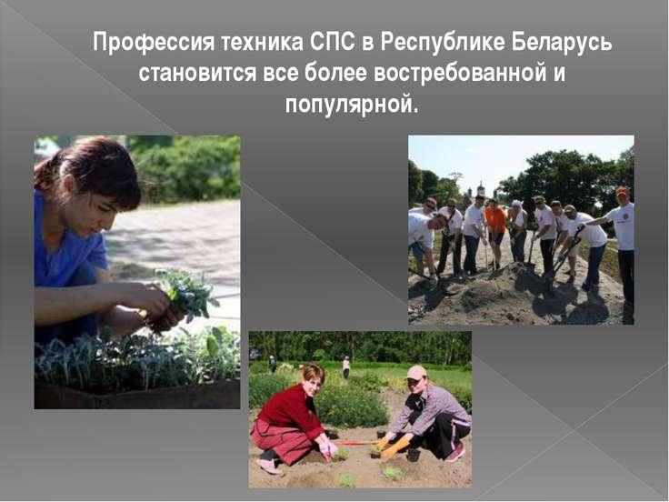 Профессия техника СПС в Республике Беларусь становится все более востребованн...