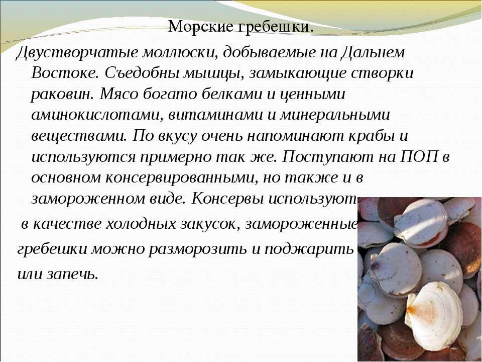 Морские гребешки. Двустворчатые моллюски, добываемые на Дальнем Востоке. Съед...