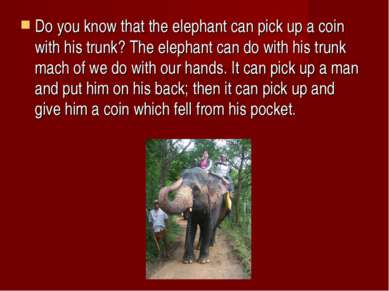 Do you know that the elephant can pick up a coin with his trunk? The elephant...