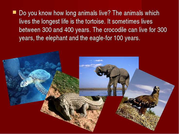Do you know how long animals live? The animals which lives the longest life i...